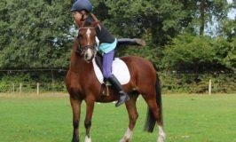 Warum sind Reiterferien bei Mädchen beliebt?