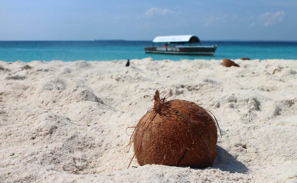 Strand mit Kokosnuss