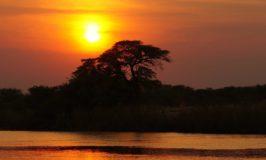 Faszinierende Abenteuer in Afrika erleben