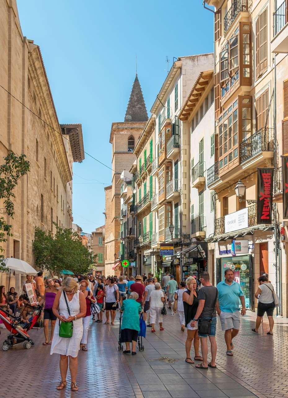 Palme de Mallorca